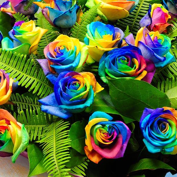 Про букет букет невесты радужные розы пионами юбилей