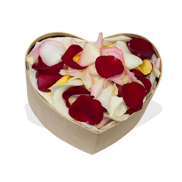 Заказать лепестки роз на свадьбу недорого, купить цветы