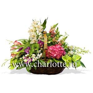 1c927b88e8304 Корзина цветов